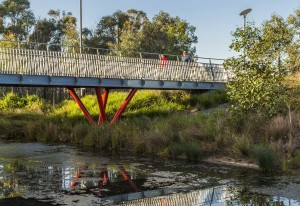CLOUSTON_Associates_THE_PONDS_Bridges_and_boardwalks_1